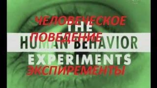 Человеческие поведение Экспиременты.
