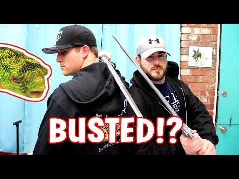 BUSTED!? STEALING FROM AQUARIUM CO-OP FISH STORE