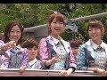 神戸まつり AKB48パレード 指原莉乃/横山由依/渡辺麻友/小嶋真子/向井地美音/高橋朱…