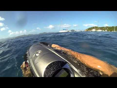 Swimming with wild dolphin in BVI (Cooper Island - Jan 2014)
