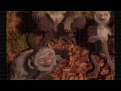 Dinosauri amazon cartoni animati film e tv