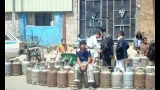 الجزائر تقطع الغاز على مصر ...هدية للكلبة زينة