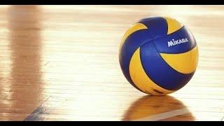 Рабочая стратегия ставок на волейбол:Золотая жила