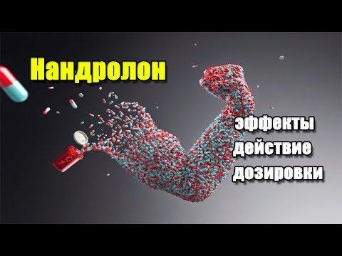 НАНДРОЛОН (ДЕКА) | описание препарата, эффекты, действие и дозировки