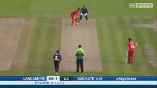 Amezing Video In The Cricket