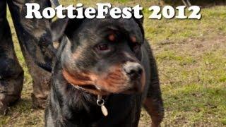 Rottiefest 2012 - Rottweiler Rescue Fundraiser