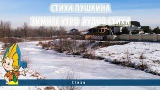 видео Бабочки пушкинского детства
