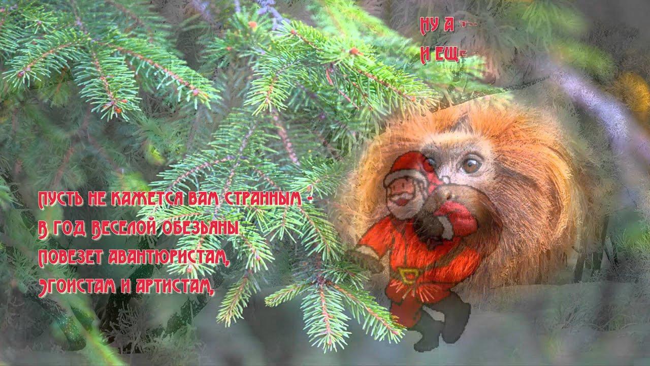 Поздравление на новый год обезьяны прикольное поздравление