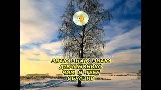Розпрягайте хлопці коней (Караоке) - Українські застольні пісні