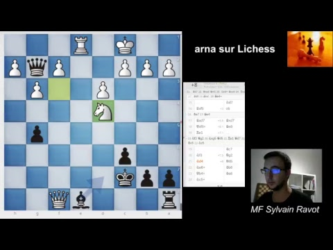 Parties d'amateurs sur Lichess