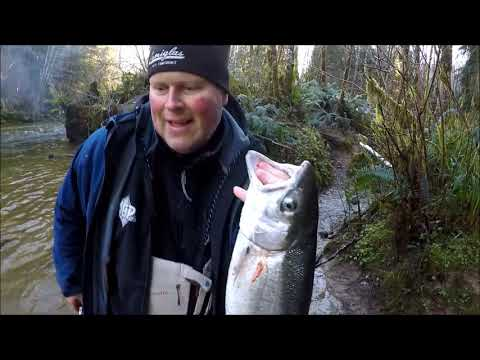 Salmon River 2018 (Unclipped Hatchery Steelhead)