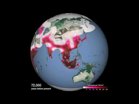 Climate Drivers of Early Human Migration