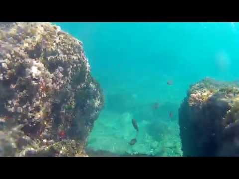 SJ4000 camera underwater test