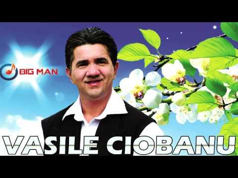 Vasile Ciobanu - Puiul meu suflet ascuns
