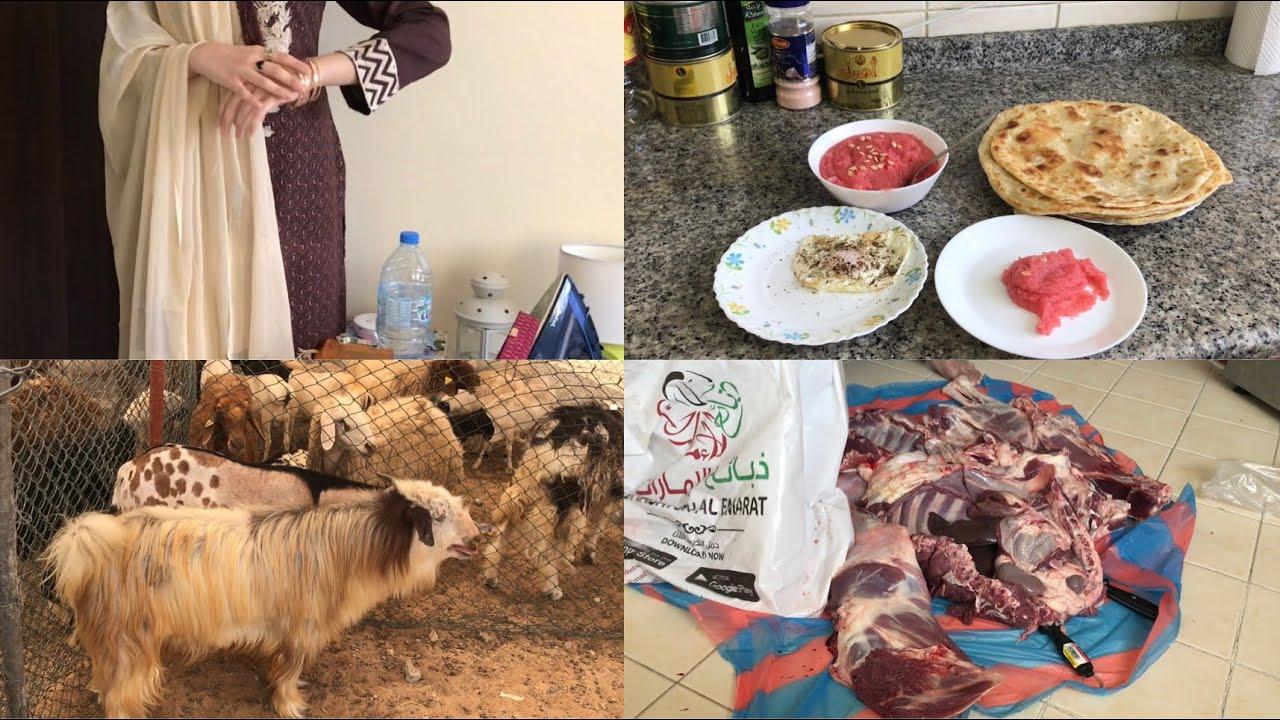 Eid ul Adha ka pehla din uae mein kese guzra || kaleji, mutton karahi || Pakistani Vlogger In Dubai