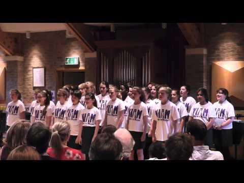 VIAM - 2014 Senior Summer Concert: We will rock you