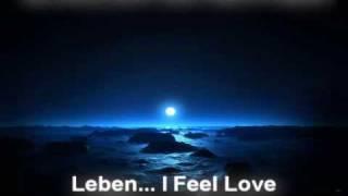 SCHILLER mit HEPPNER - Leben... I Feel You (Drolax remix).avi