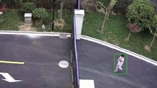 IP Surveillance Camera System Line Crossing Alert Feature