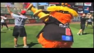Orbit the best mascot in minor league baseball