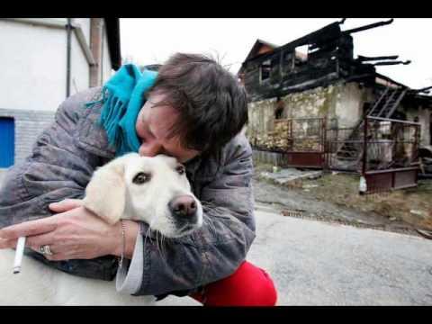 Čovjek i pas - Arsen Dedić
