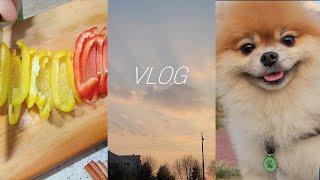 자취 브이로그 VLOG EP11 간단 월남쌈, 호떡 와…