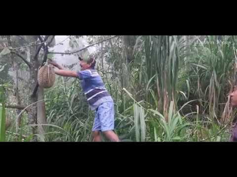 Jawa Pos Belah Durian Episode 45: Durian Pasrepan Pasuruan