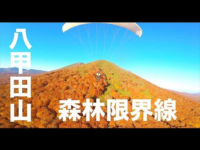 【紅葉・八甲田山・青森#150】「植生が変わってるよ!」空撮・たごてるよし_AOMORI Aerial_TAGO channel
