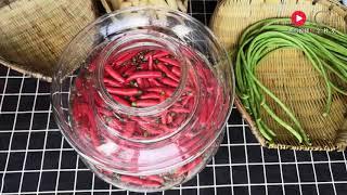 怎样才能做出香脆不生花的四川泡菜?关键秘诀在这一步,值得收藏 【小川子熟食】