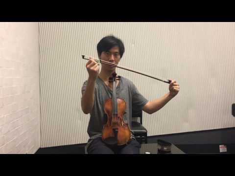 What Every Beginner Violinist NEEDS to know