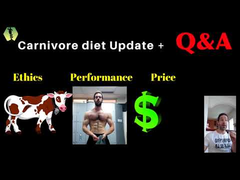Carnivore Diet Update + Q&A: Ethics, Price of the diet, Performance, Reintroducing carbs..