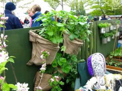 Balcony vegetable garden design ideas - YouTube