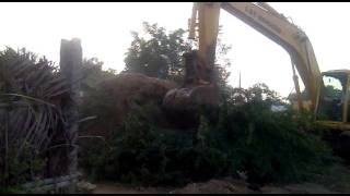 JCB machine cutting tree