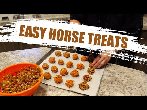 3 EASY & CHEAP HORSE TREAT RECIPES!!