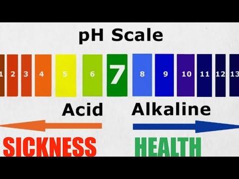 Is the Acid Alkaline a Myth? Responding to Chris Kresser Paleo Advocate