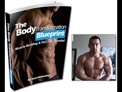 Body transformation blueprint review youtube body transformation blueprint review malvernweather Images