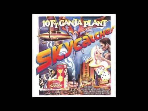 10ft Ganja Plant - State of Man