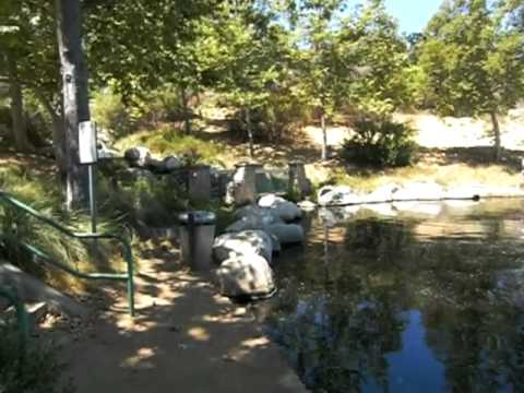 Lagoon At Oak Canyon Community Park In Oak Park