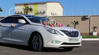 Свадебное Авто .Одесса
