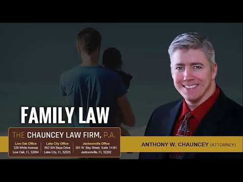 How Is Child Custody Decided In Florida?