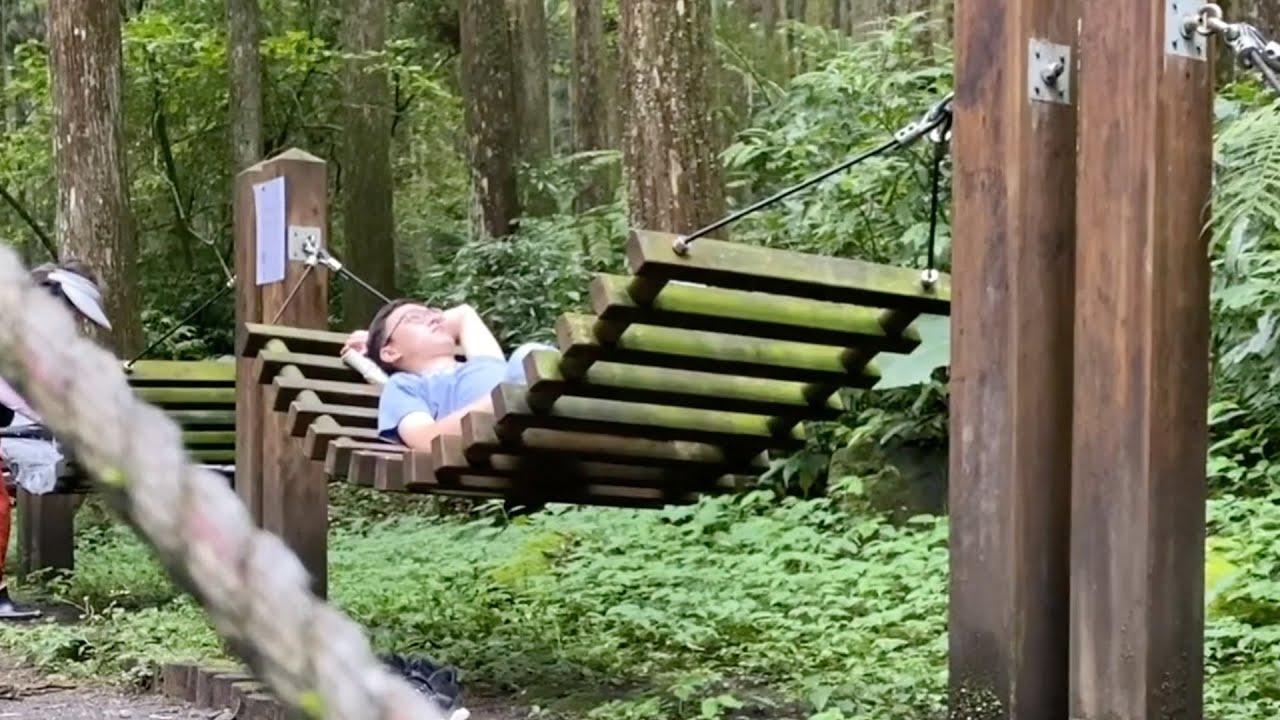 神秘客番外篇 國家提供的森林吊床!