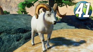 Planet Zoo Franchise - Part 41 - DALL SHEEP