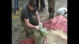 Грузовик с 170 кг наркотиков задержали на границе Челябинской области