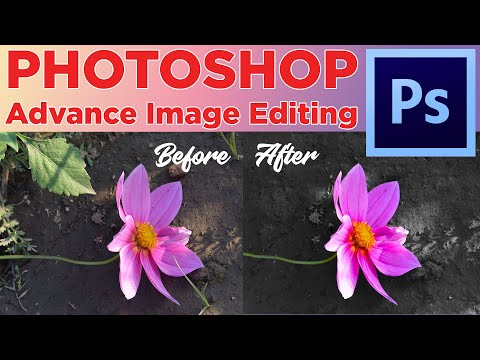 Image Editing With Patch Tool, Magic Wand Tool Photoshop CC