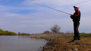ЛОВЛЯ ВОБЛЫ до запрета Весенняя Астраханская рыбалка 2020