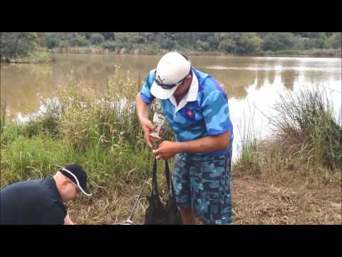 Carp Fishing Pretoria Struben Dam .18.26lb Carp