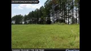 Plantation Road Madison Georgia, perfect horse farm land for sale, 22 acres