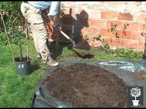 Planter et palisser un arbre fruitier mon eden youtube for Arbre fruitier