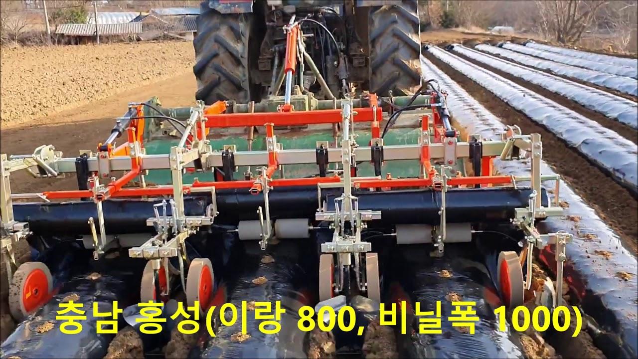 대성농기계 봄감자 작업영상(예천,홍성,당진)