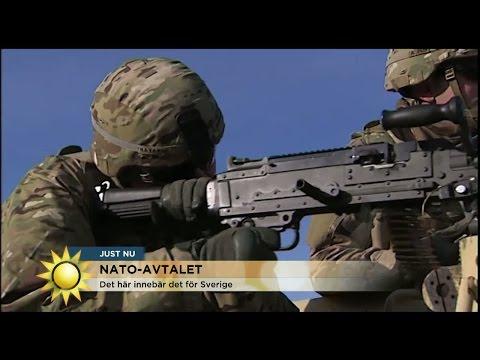 Därför vill Vänsterpartiet skjuta upp Nato-avtalet - Nyhetsmorgon (TV4)