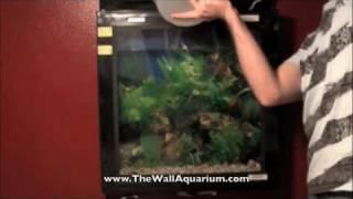 How to clean the Aquavista 500 Wall Mounted Aquarium